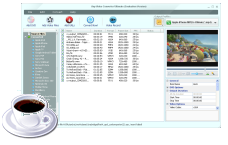 iPod video management, MP4 converter