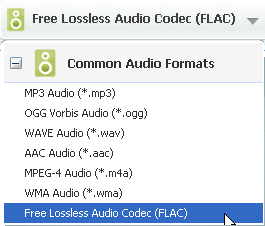 Choose Flac format as output format