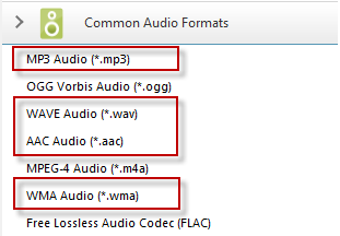 convert audio to ZTE Flash