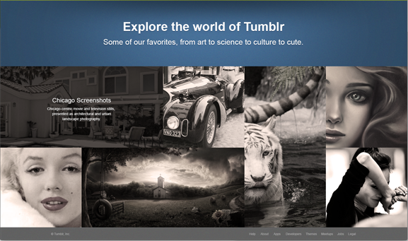 The Easiest Way to Free Download Tumblr Videos
