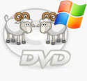 dvd cloner, dvd ripper, copy dvd to dvd